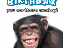 Funny Birthday Images Wishes