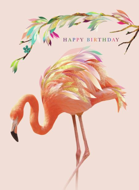 Cute Funny Birthday Wallpapers